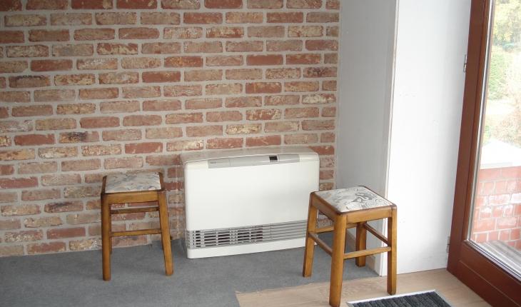 rinnai 556 ftr le gaz naturel. Black Bedroom Furniture Sets. Home Design Ideas
