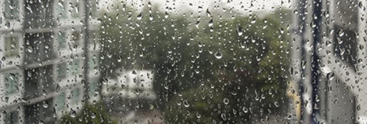 Geen zure regen